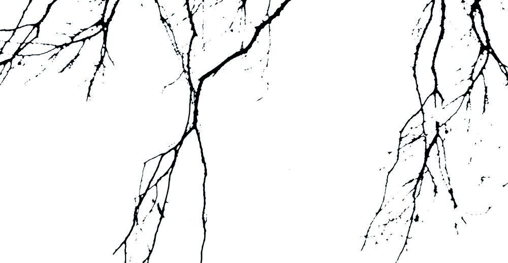 Strings - CIRCU5