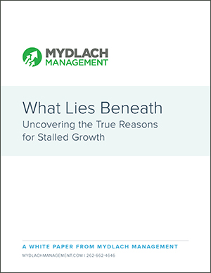 Why Your Company has Stalled Sales Growth White Paper Download