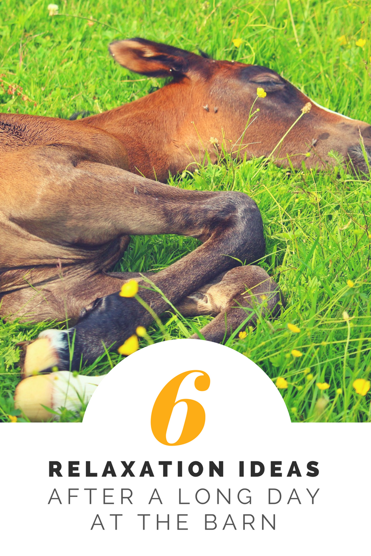 6 relaxation ideas after a long day at the barn
