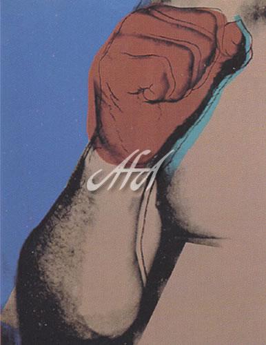 Andy_Warhol_AW020_ali181.jpg