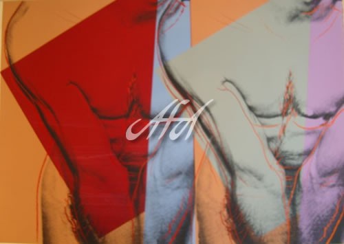 Andy_Warhol_AW347_torso_double.jpg