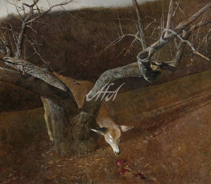 8c0ecc228cd24af46e44f8165cd2dcc9--andrew-wyeth-art-jamie-wyeth watermark.jpg