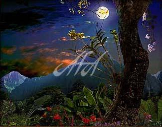 satobo 05_03 watermark.jpg