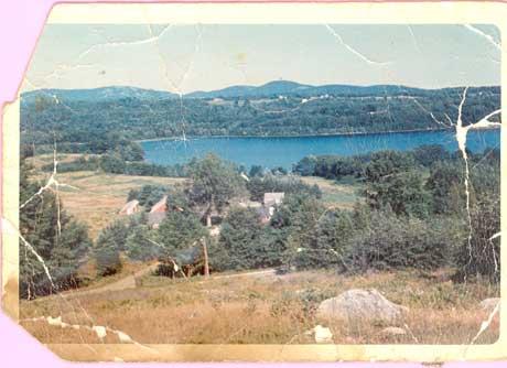 Farm 1965