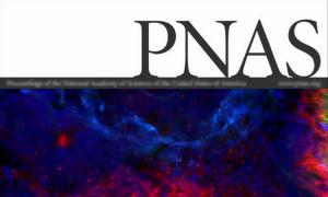 PNAs Magazine Zoe Chance.png