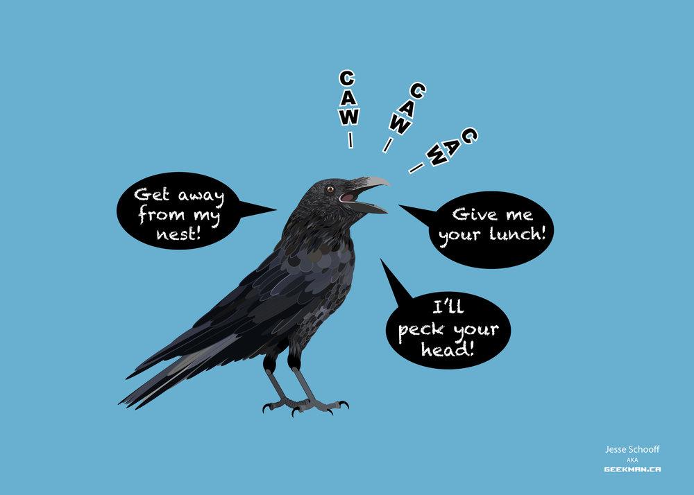 crow-desktop-4k.jpg