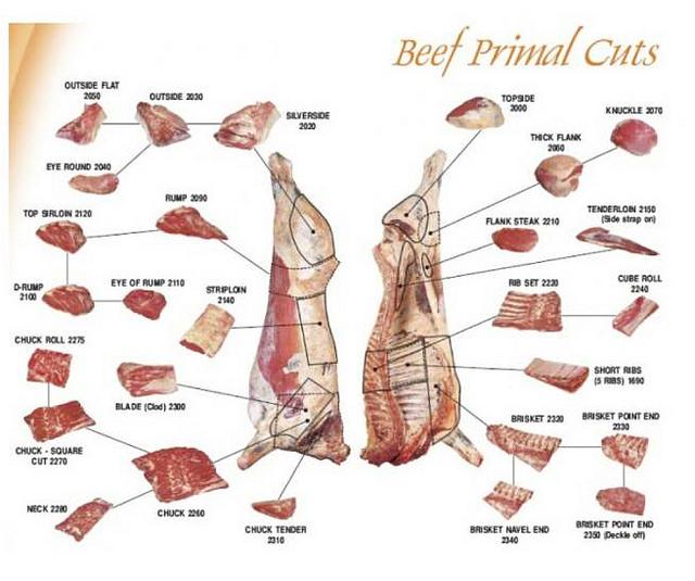 beef primal cuts.jpg
