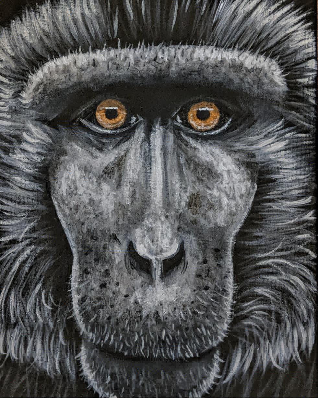 "Macaca nigra  Celebes Crested Macaque Acrylic on 8""x10"" canvas"