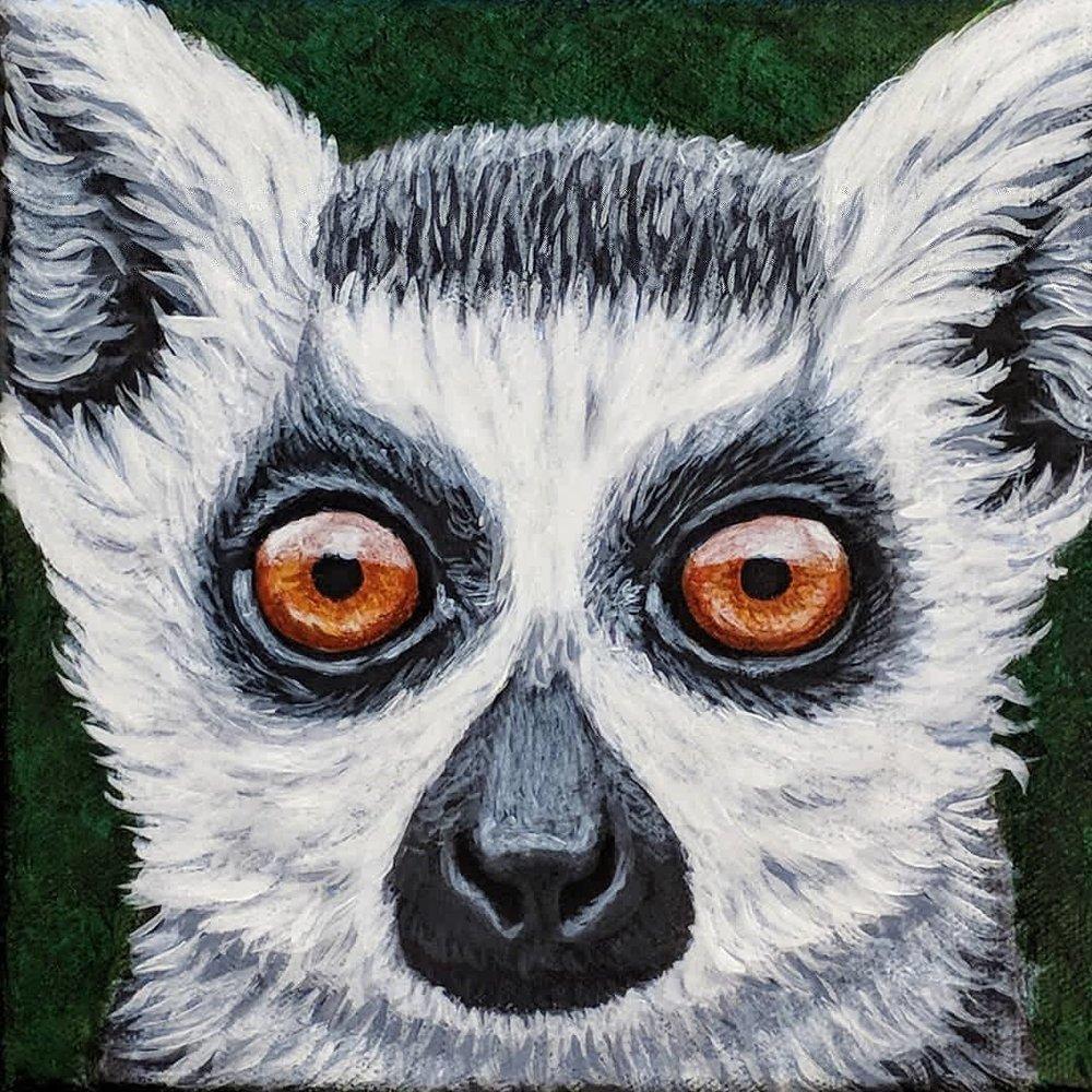 """Lemur catta  Ring-tailed Lemur Acrylic on 8""""x8"""" canvas"""