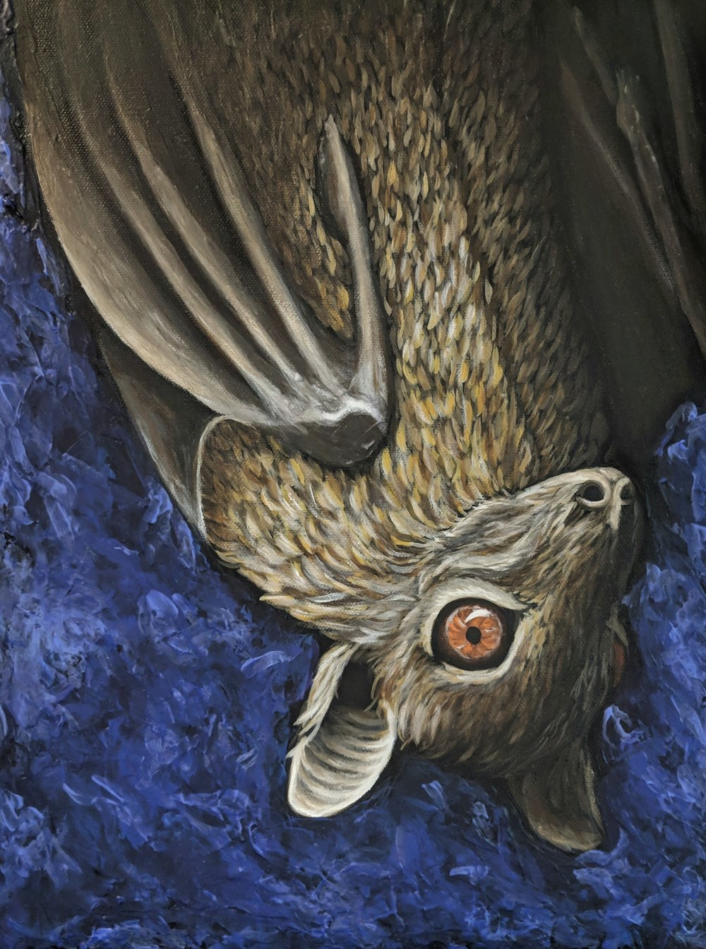 "Eidolon helvum  Straw-colored Fruit Bat Acrylic on 12""x16"" canvas"