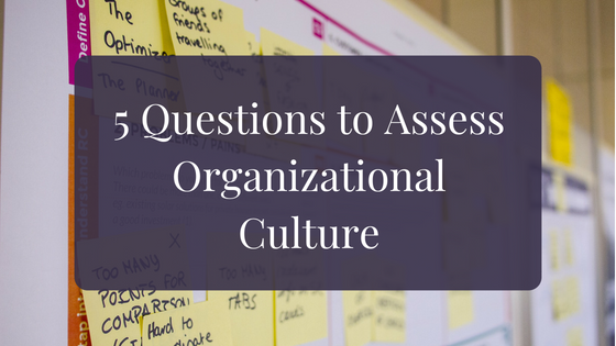 Assess Org Culture - Blog Banner.png