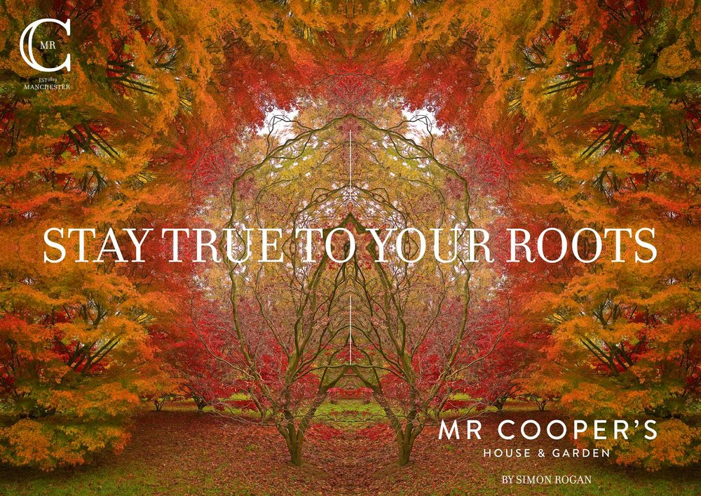 Mr Coopers House and Garden - Autumn