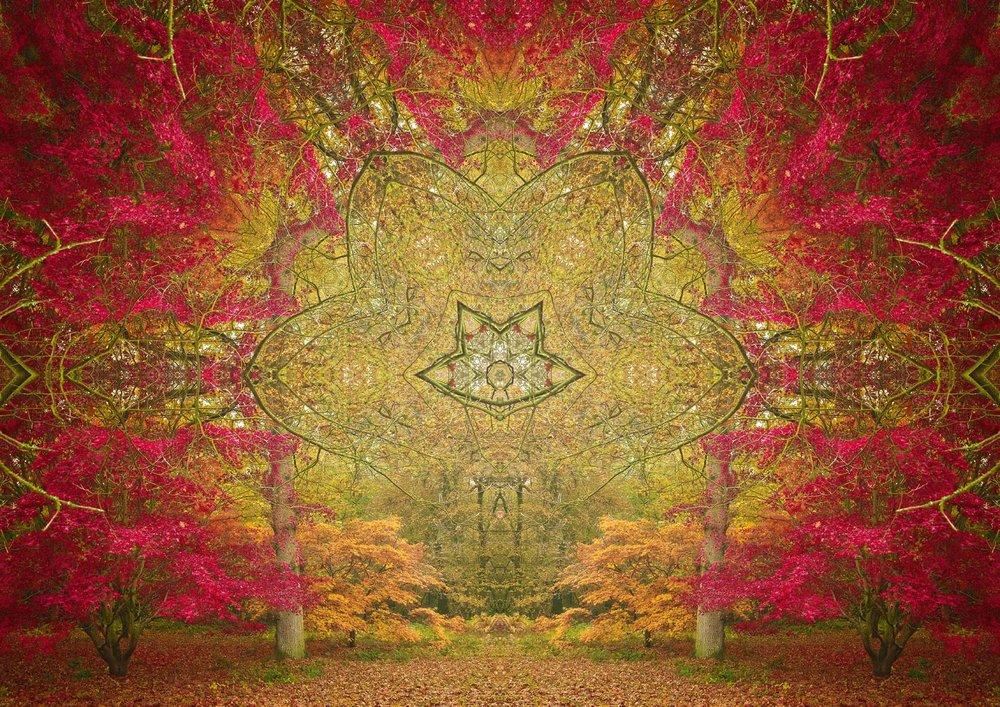Autumn Portal 3
