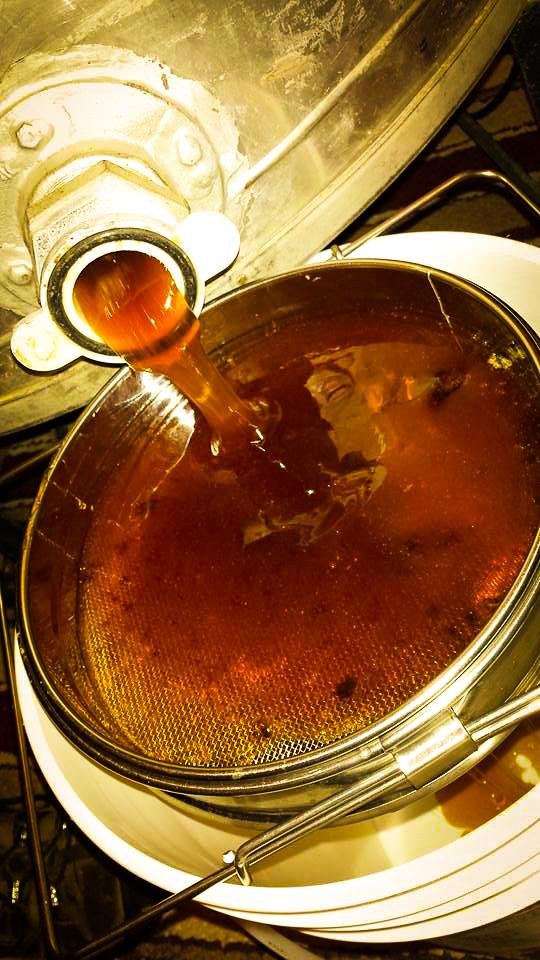Columbia Gorge Honey Raw Honey Healing-16.jpg