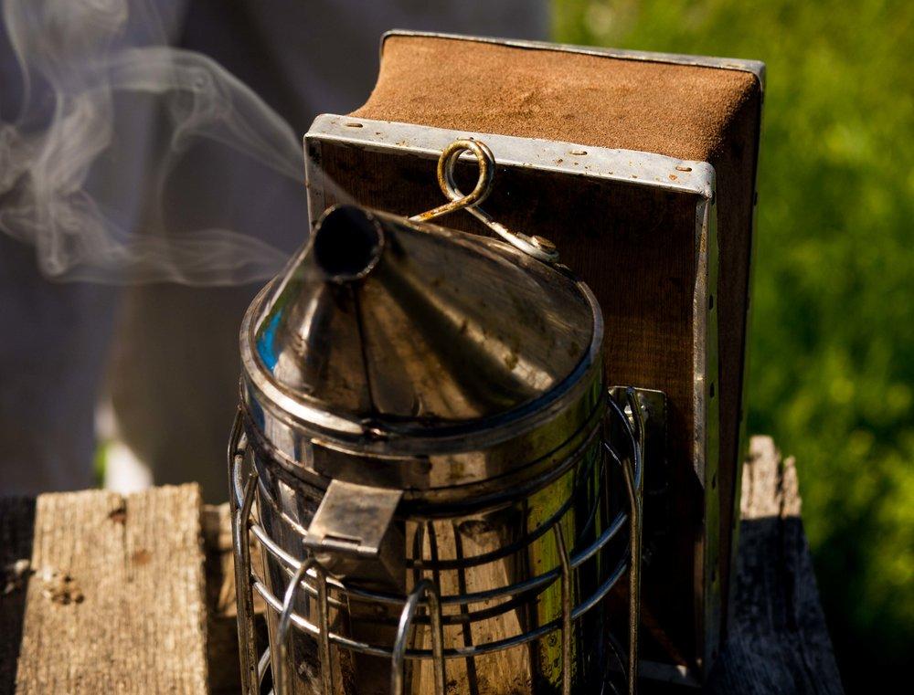 Columbia Gorge Honey The Dalles Oregon Raw honey and healing wild honey wild bees_-16.jpg
