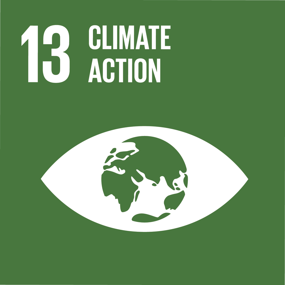 SDG Goal Number 13: Climate Action