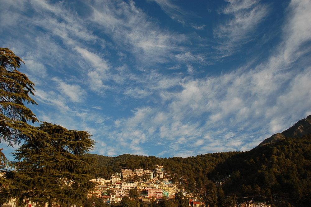 6_Dharamsala_DSC_0306_2.jpg