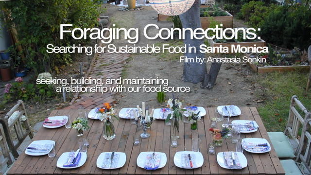 Foraging-Connections-poster-_2.png