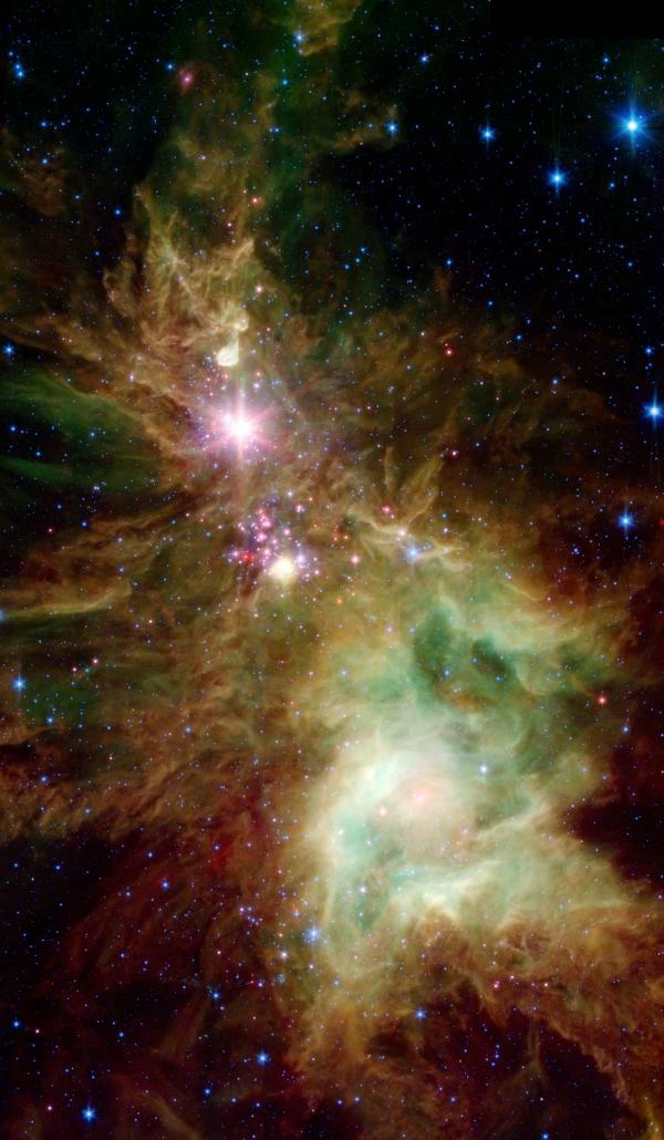 Cosmic_Tree.jpg