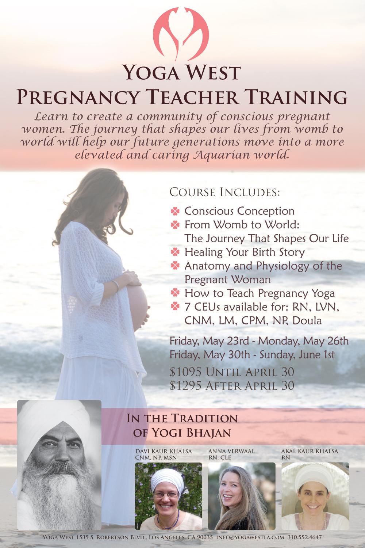 Pregnancy-Teacher-Training-2014-Flyer.jpg