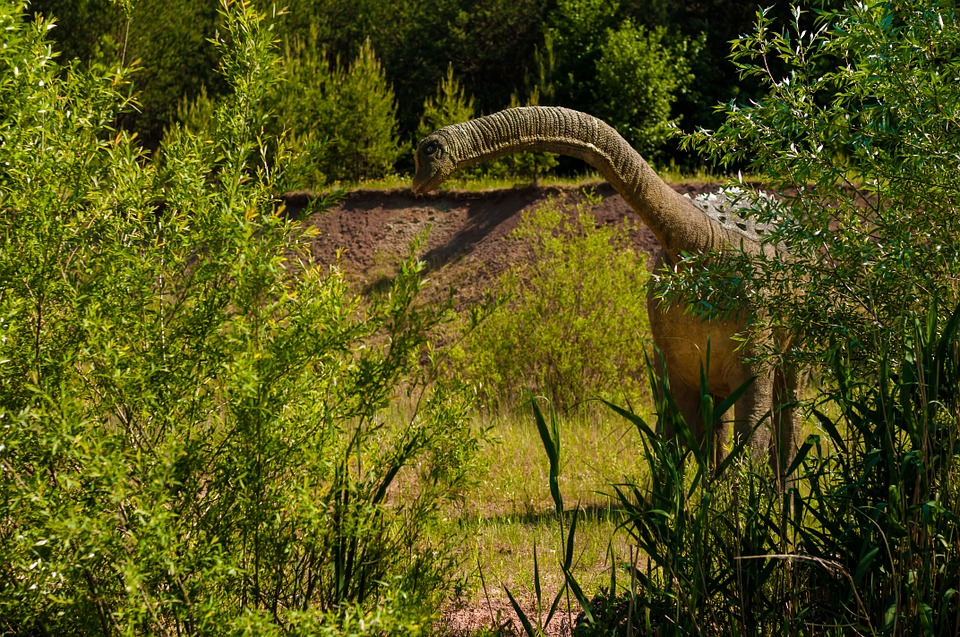 dinosaurs-958021_960_720.jpg