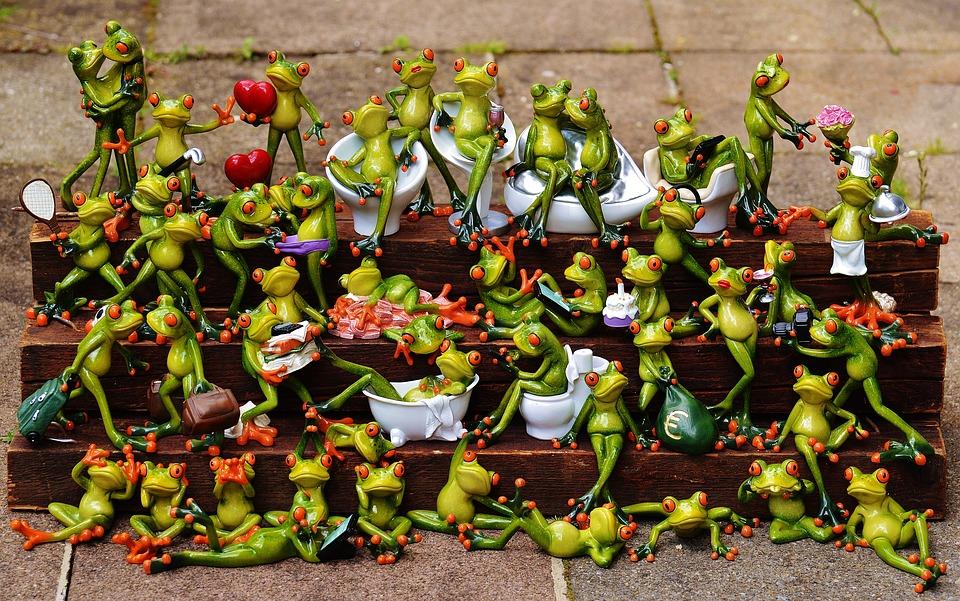 frogs-1371297_960_720.jpg