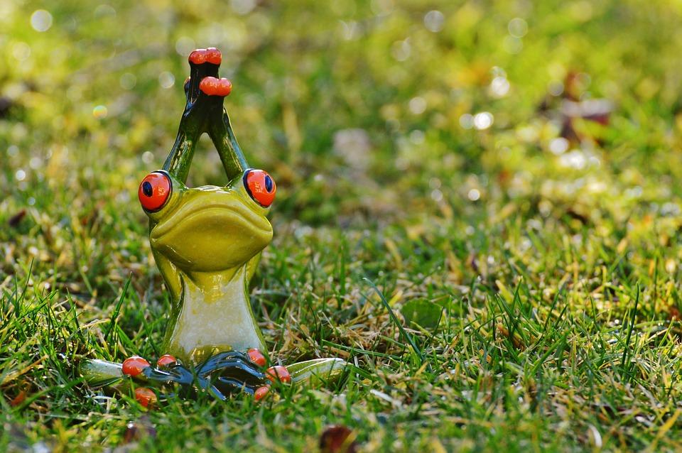frog-1109783_960_720.jpg