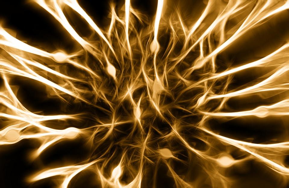 nerves-346928_960_720.jpg