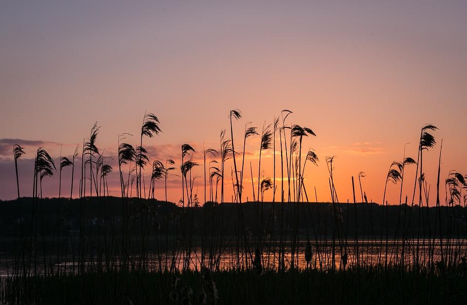 sunset-1415984_960_720.jpg