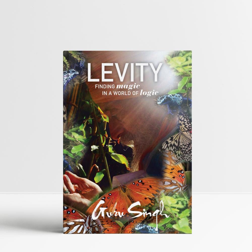 Levity.png