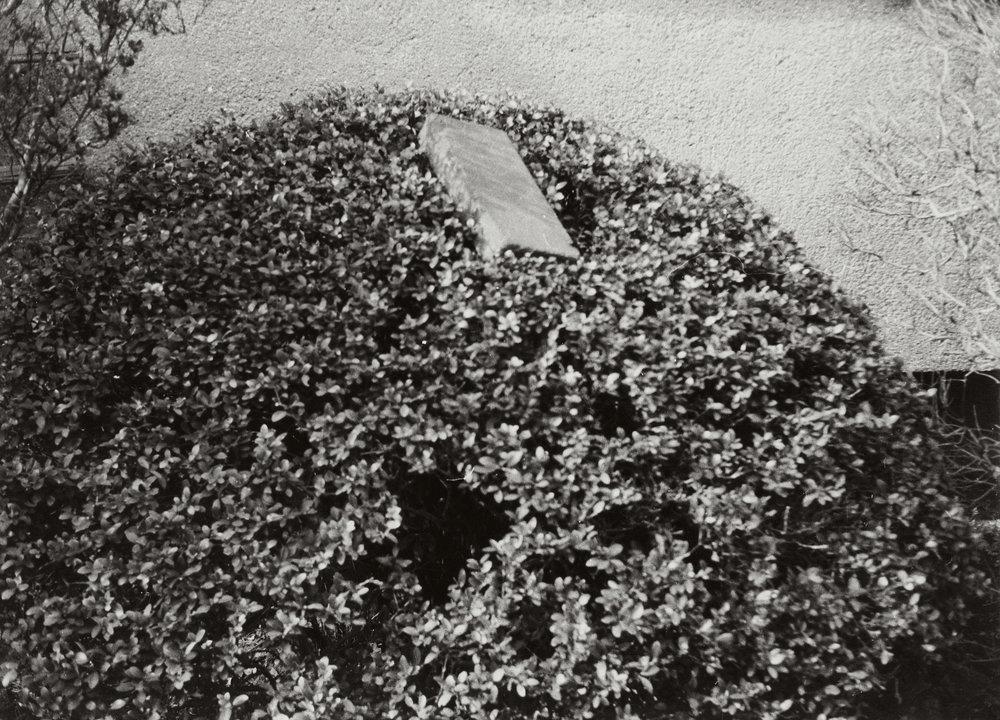 Inactive Environment 1970 無為状況 ( Mui Jōkyō ) C-print 7 7/8 x 10 15/16 inches 20 x 27.8 centimeters