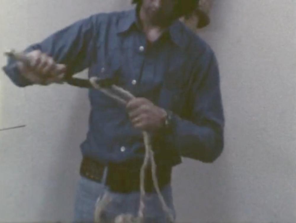Fieldology , 1974