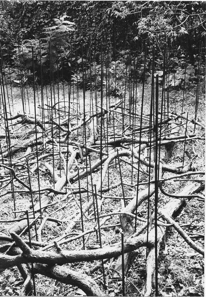 Condition of Situated Units, 1975 位況 ( Ikyō ) Branches, metal rods Dimensions variable Installation view, artist's studio, Tokyo, 1975 Photo: Kishio Suga