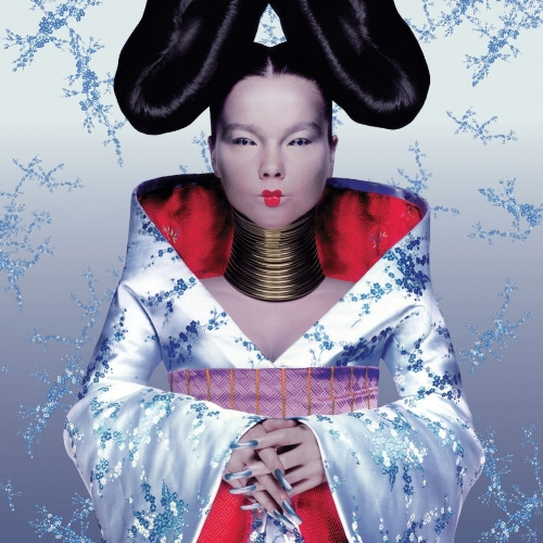 The striking cover for Björk's 1997 album,  Homogenic