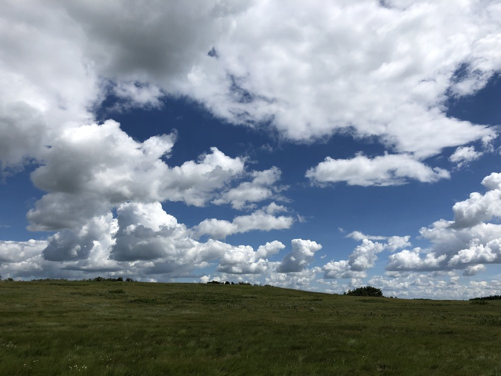 Alt-Text: North Dakota rolling green hills blue sky and clouds