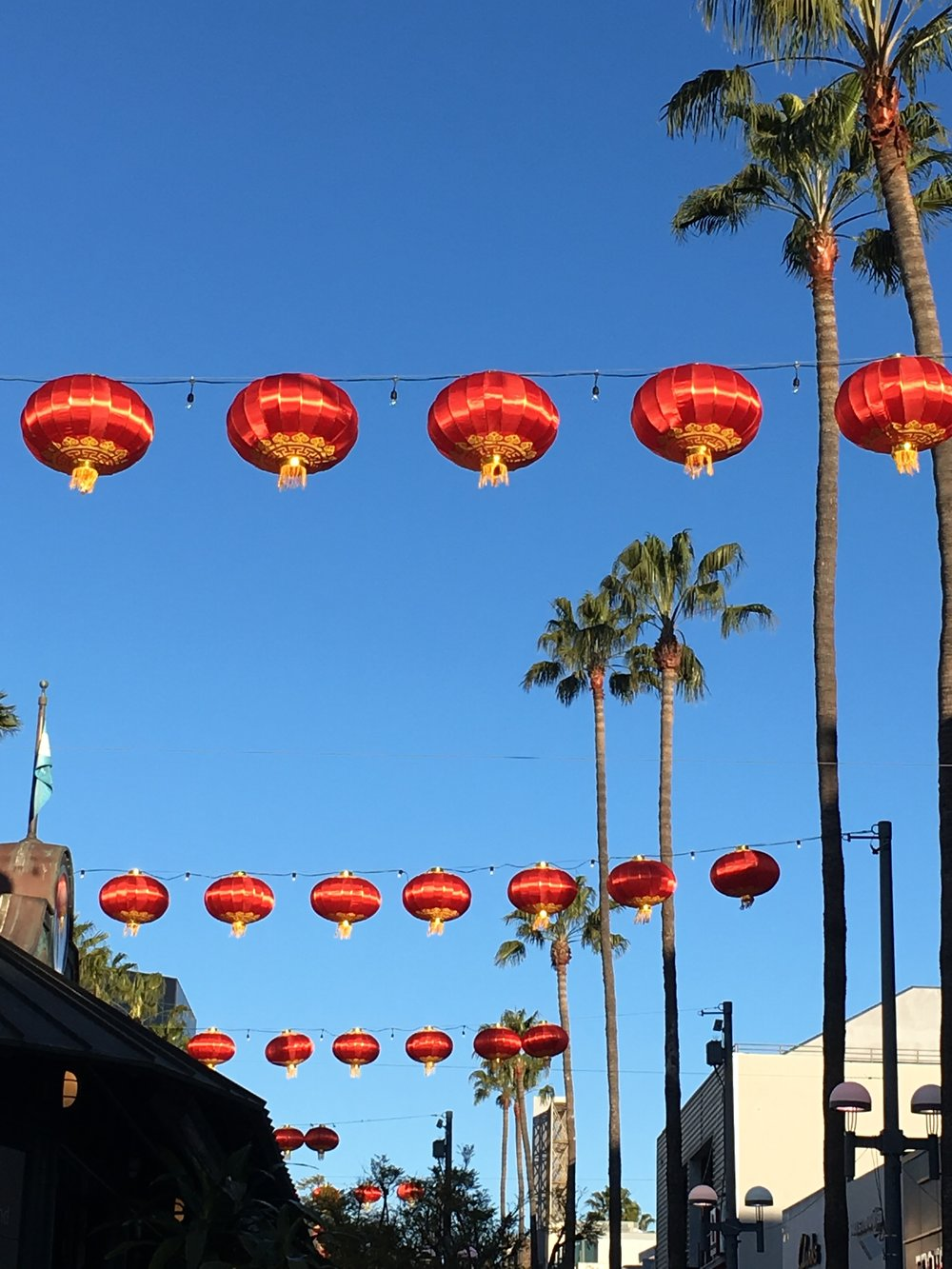 Red and gold lanterns hanging above the street with palm trees in background.