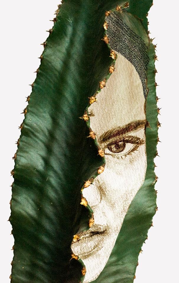 cactushead3_liselottewijma.jpg