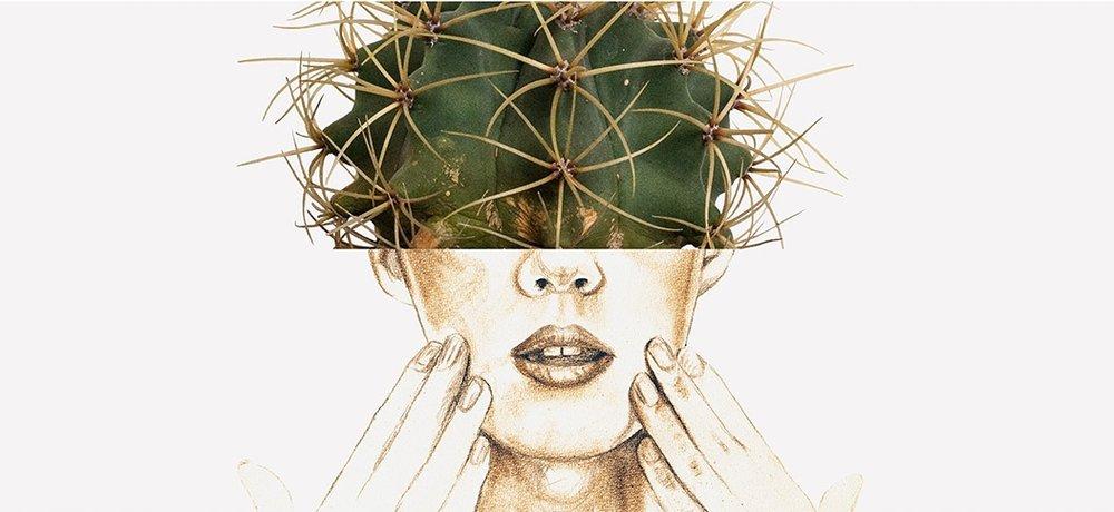 cactus liggend 2_liselottewijma.jpg