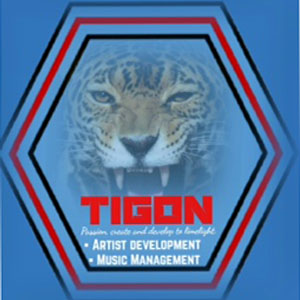 TIGON (Artist development and music management) is the collaboration and networking between Valley Community Theatre/ Studio Liverpool and Mapfest.org.