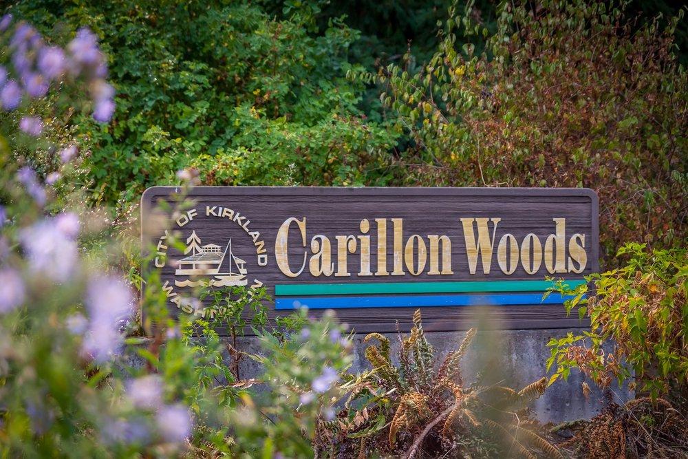 CarillonWoodsPark.jpg
