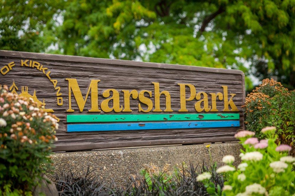 MarshPark.jpg