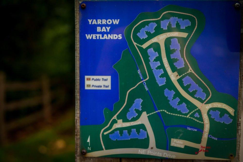 YarrowBayWetlands.jpg