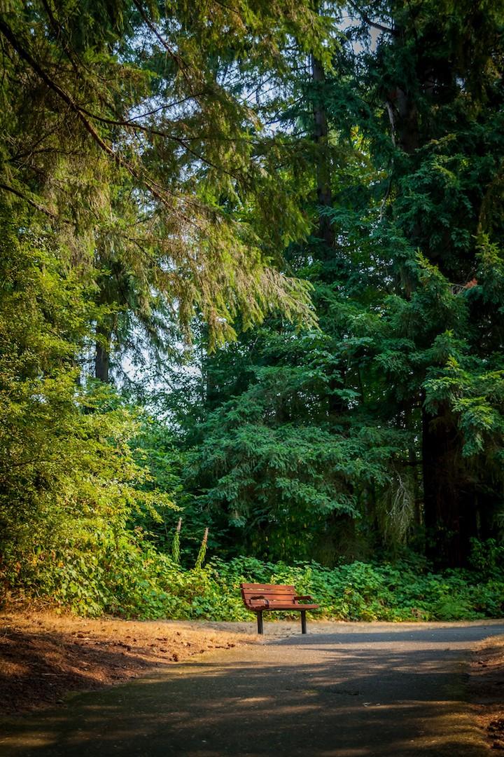 WoodlandsPark7.jpg