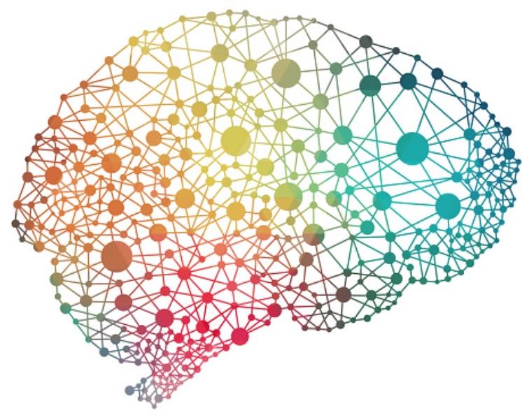 brainwebsite.jpg