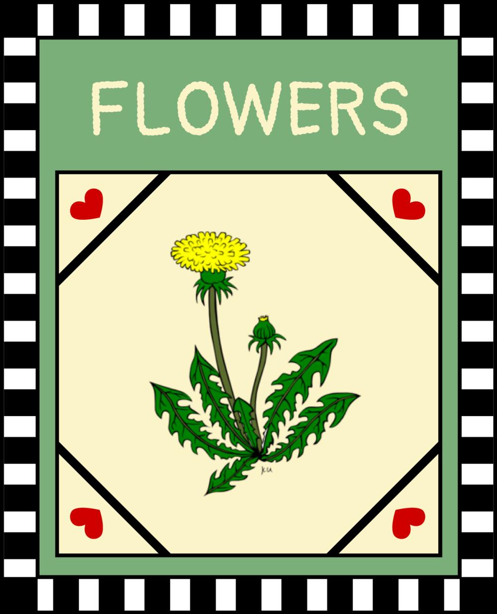 Flowers / Weeds