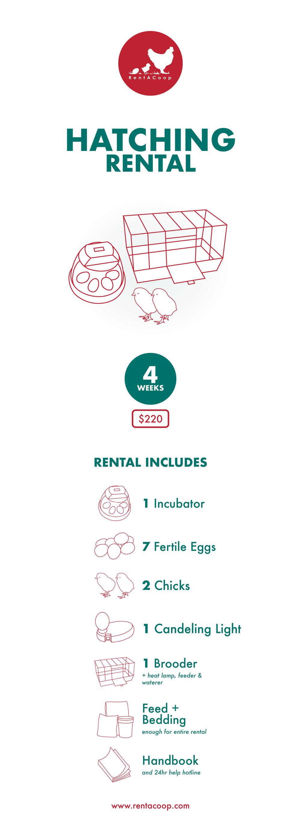 Hatching Rental