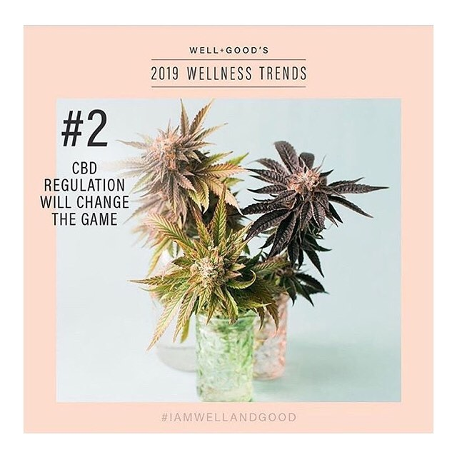 Oh hey, Farm Bill! We're all about that hemp pen... and so is the team at Well+Good, which already predicted one of the top wellness trends for 2019: CBD! Needless to say, we agree 😎👏💚 (repost of our hempy friends @lifebloomorganics)
