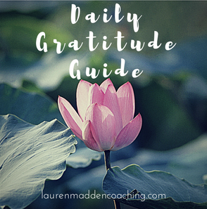 The Daily Gratitude Guide.png