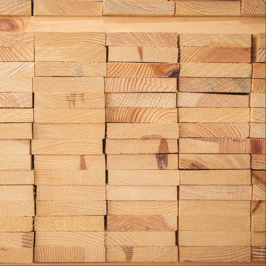 Timber Shot.jpg