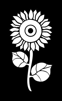 --logo-white.png